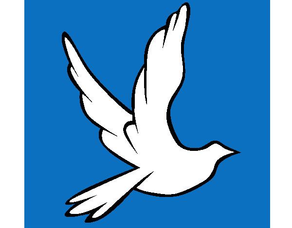Dibujos de Palomas de la paz para Colorear  Dibujosnet