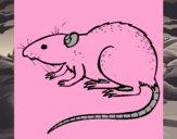 Rata subterráena
