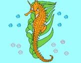 Dibujo Caballito de mar oriental pintado por ivanmoren
