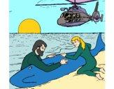 Rescate ballena