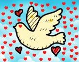 Paloma del amor