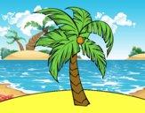 Una palmera