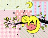 El gato y la luna