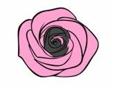 Dibujo Flor de rosa pintado por Jshwnxdbw