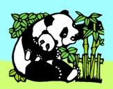 Dibujo Mama panda pintado por Marive