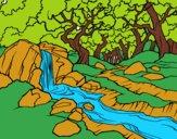 Dibujo Paisaje de bosque con un río pintado por 58723176