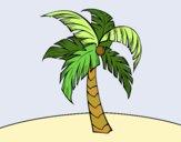 Dibujo Una palmera pintado por nenita5