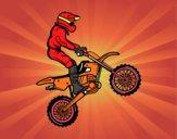Moto de trial