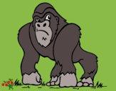 Gorila 1