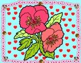 Dibujo Flores de pensamiento pintado por aalu11