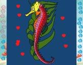 Caballito de mar oriental