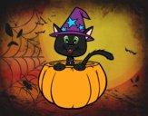 Gatito de Halloween
