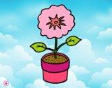 Dibujo Una flor de primavera pintado por ceciliala