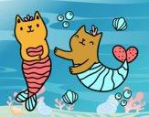 Gatos sirena