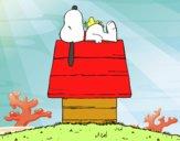 Snoopy durmiendo