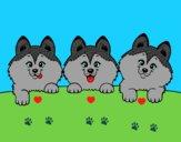 Dibujo 3 perritos pintado por Claudiolog