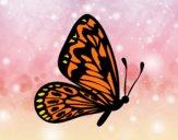 Mariposa alas normales