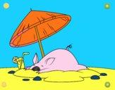 Cerdito en la playa