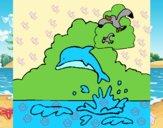 Delfín y gaviota
