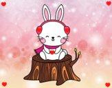 Conejo silvestre abrigado