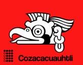 Los días aztecas: el buitre Cozcaquauhtli