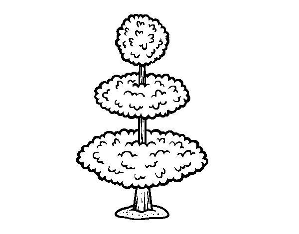 Worksheet. Dibujo de Alta jardinera para Colorear  Dibujosnet