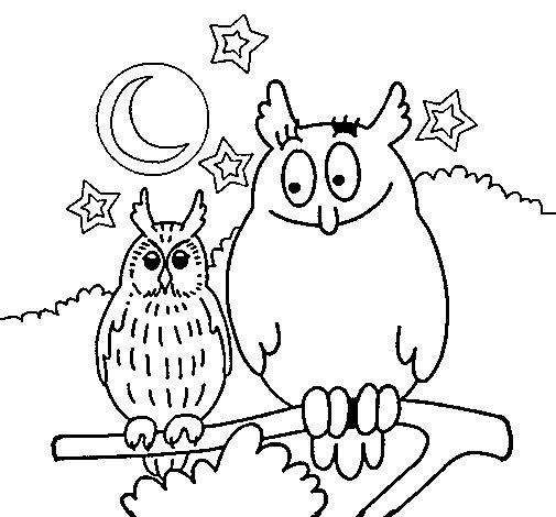 Dibujo de Bhos para Colorear  Dibujosnet