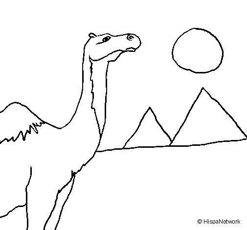 Dibujo de Camello para Colorear