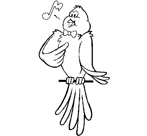 Dibujo de Canario cantando para Colorear