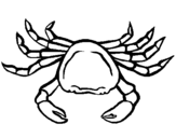 Dibujo de Cangrejo de mar 1 para colorear