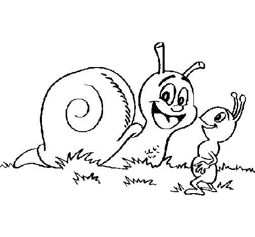 Dibujo de Caracol y hormiguita para Colorear