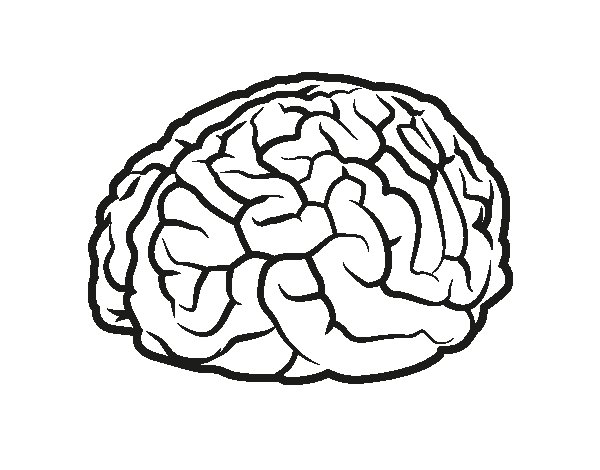 Dibujo de Cerebro para Colorear - Dibujos.net