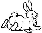 Dibujo de Conejo contento para colorear