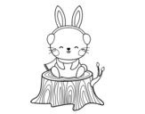 Dibujo de Conejo silvestre abrigado para colorear