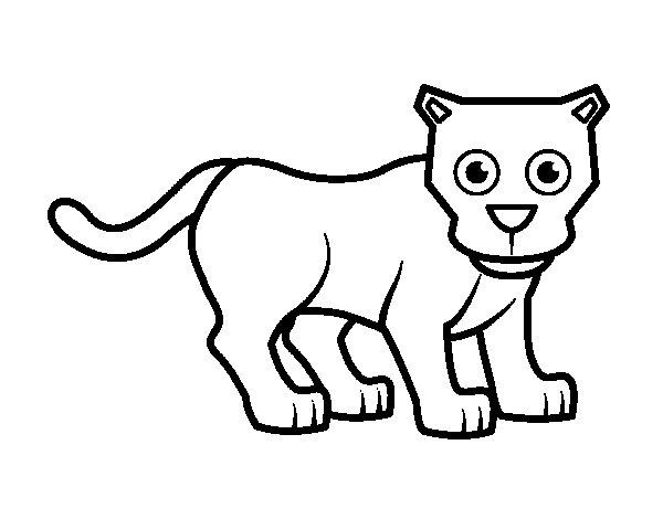 Dibujo De Pantera Pantera Colorear Dibujos Top Como: Dibujo Para Colorear De El Puma
