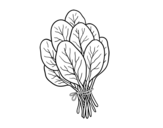 Dibujo de Espinacas para colorear