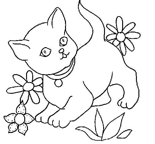 Dibujo de Gatito 1 para Colorear
