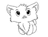 Dibujo de Gatito lindo para colorear