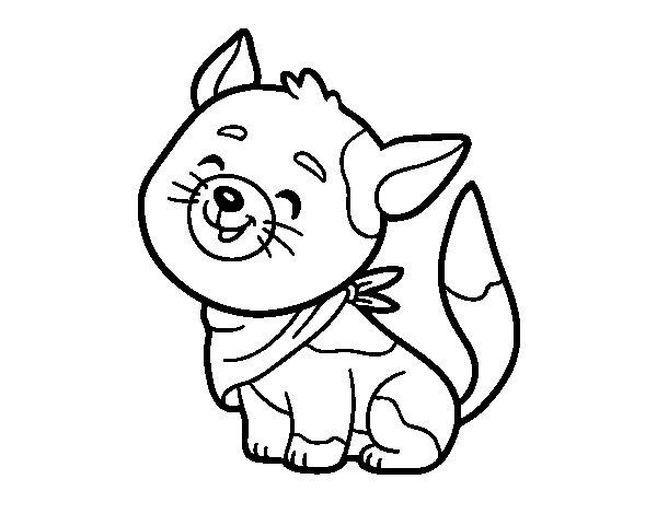 Dibujo de Gato con bandana para Colorear
