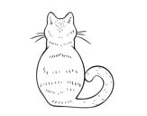 Dibujo de Gato de espaldas para colorear