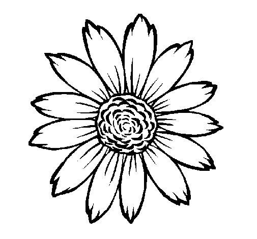 Dibujo de Girasol para Colorear