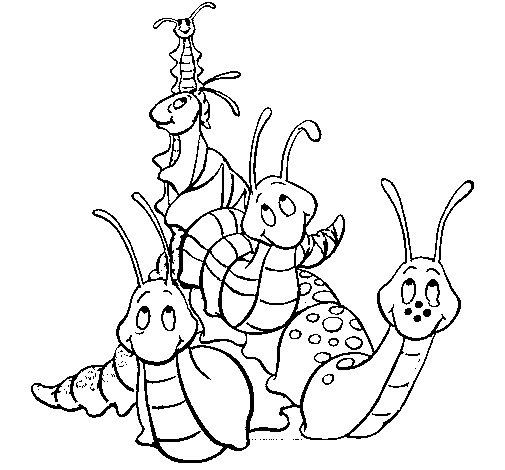 Dibujo de Grupo de insectos para Colorear