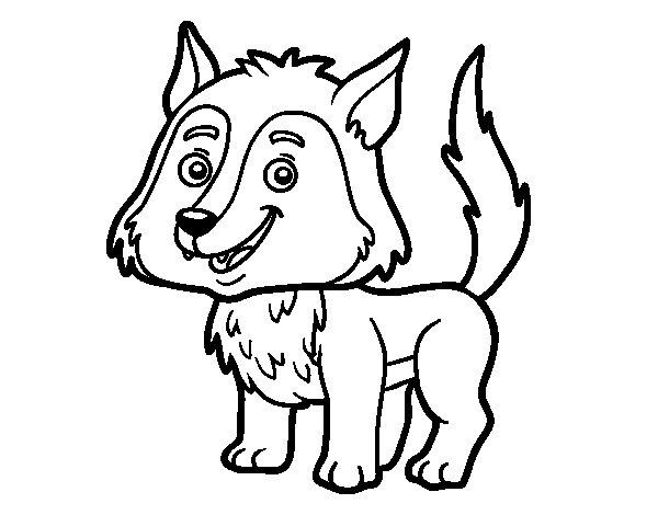 Dibujo de Lobo joven para Colorear  Dibujosnet