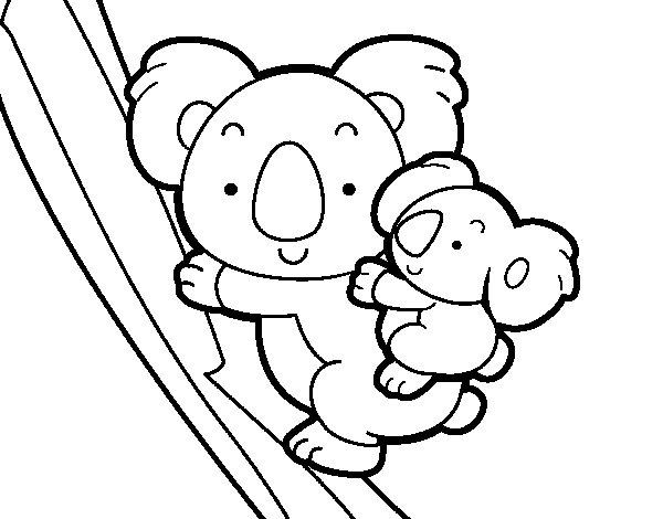 Dibujo de Madre koala para Colorear