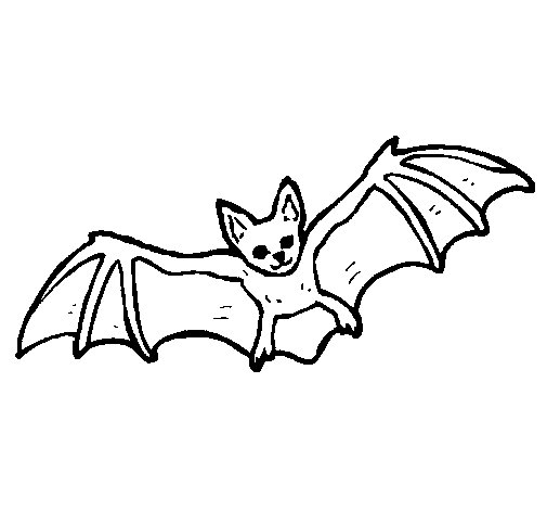 Dibujo de Murciélago volando para Colorear