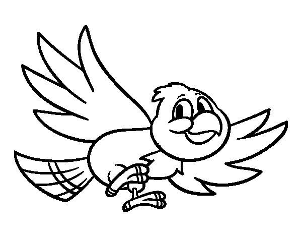 Dibujo de Pájaro volando para Colorear