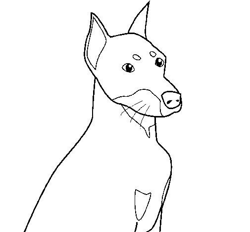Dibujo de Perro 2 para Colorear