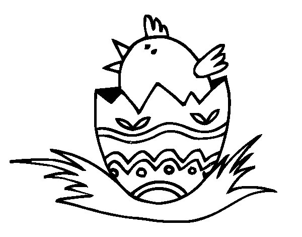 Dibujo de Pollito en el cascarón para Colorear
