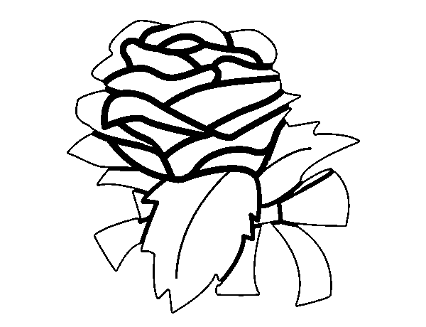 Dibujo de Rosa flor para Colorear  Dibujosnet
