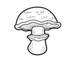 Dibujo de Seta portobello para colorear
